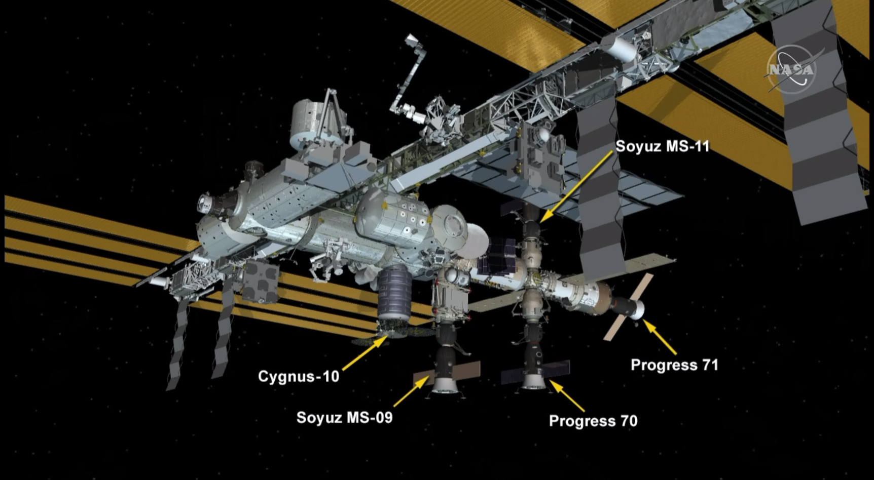 This diagram shows the location of the Soyuz MS-11 spacecraft docked to the International Space Station