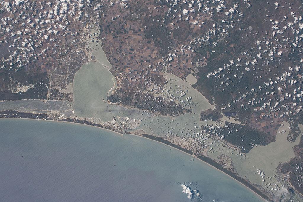 Wetland at Aransas National Wildlife Refuge.