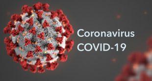 Coronavirus COVID-19 coverage