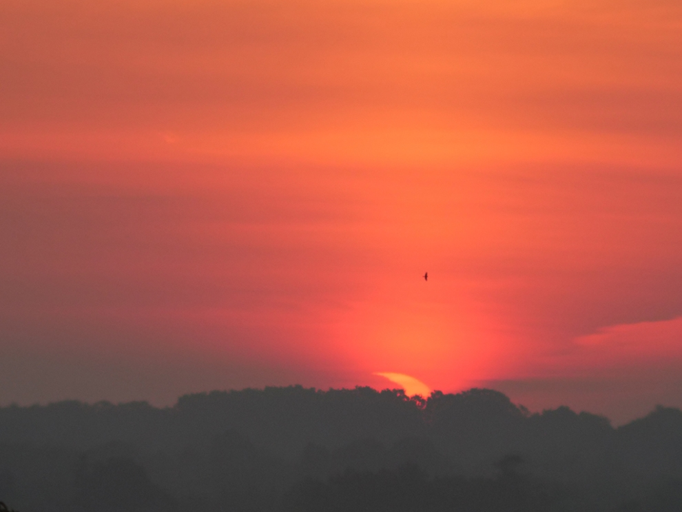 The sun rises and a partial eclipse is seen in London, Ontario. Credit: Dale Armstrong, RASC London.